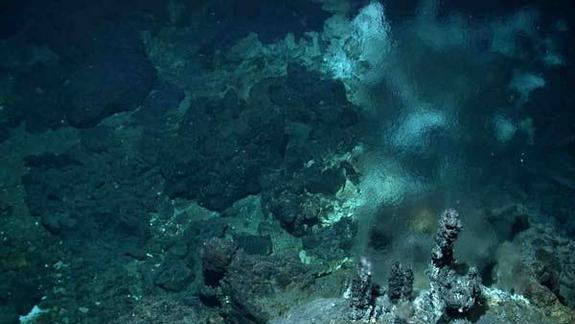 Deep-Sea Vent Life Not Living Fossils
