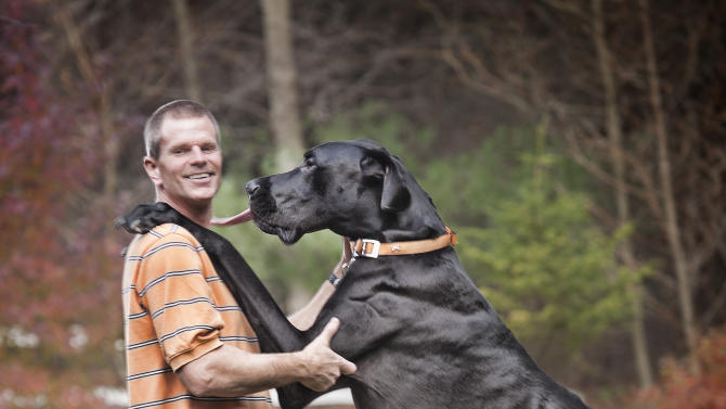 In an undated photo provided by Guinness World Records 2013 Book, Kevin Doorlag stands with his dog Zeus in Otsego, Mich. The Great Dane is now officially the world's tallest canine according to the record book. The 3-year-old measures 44 inches from foot to shoulder. Standing on his hind legs, Zeus measures 7-foot-4. (AP Photo/Guinness World Records 2013 Book, Kevin Scott Ramos, HO)