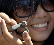 A woman holds a baby sea turtle before releasing into the sea in the western Philippines province of Bataan. Philippine authorities rescued 14 protected sea turtles that were caught in a net laid down by Chinese poachers, a navy commander said Saturday