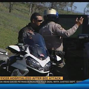 CHP officer hospitalized after bee attack