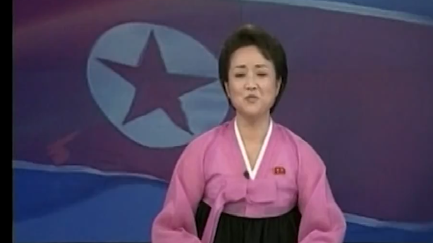 The North Korean Anchorwoman Who Unveiled the Rocket Launch Is Amazing