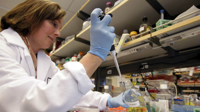Report: Calif. stem cell agency needs overhaul