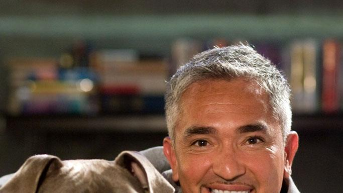 Cesar Millan The Back-up Plan Production Stills CBS 2010