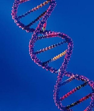 Can DNA testing determine the perfect diet plan for you?