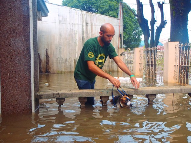 PAWS-volunteer-Joe-Claret-carefully-puts-a-leash-on-Bebekara--one-of-the-dogs-rescued-in-Cainta--Rizal--1--jpg_085521 - About THE PHILIPPINE ANIMAL WELFARE SOCIETY - Directory Philippines