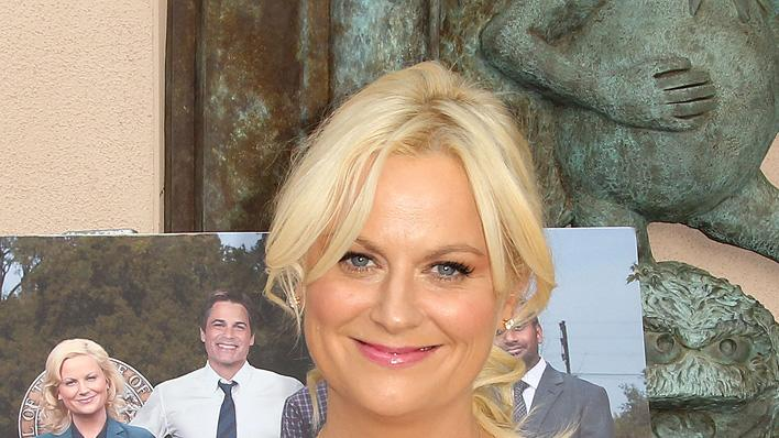 Amy Poehler Birthday