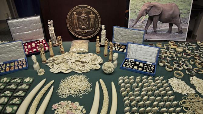 Jewelry and carvings are displayed during a press conference where Manhattan District Attorney Cyrus R. Vance, Jr., announced the guilty pleas of two ivory dealers and their businesses for selling and offering for sale illegal elephant ivory with a retail value of more than $2 million on Thursday, July 12, 2012 in New York.  (AP Photo/Bebeto Matthews)