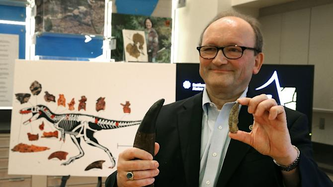 Paleontologist, Hans Sues, of the Smithsonian Museum of Natural History, compares a T-Rex tooth (L) to the tooth of a newly discovered dinosaur during a news conference at the museum, March 14, 2016 in Washington, DC