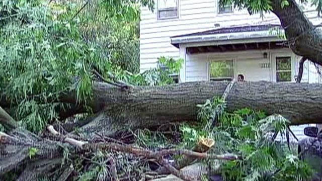 Illinois town copes with storm damage and no power