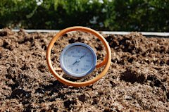 68 13 Thermometer in compost 670.jpg