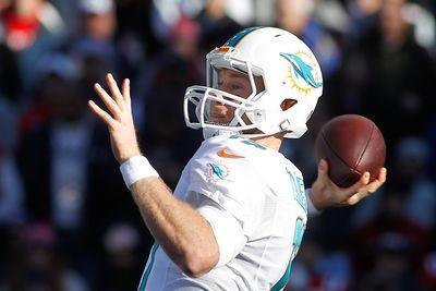 Vikings vs. Dolphins 2014 live stream: Time, TV schedule and how to watch online