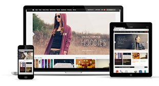10 Awesome Examples of Ecommerce Sites Using Responsive Web Design image burton rwd