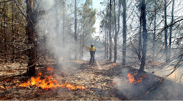 A firefighter battles with flames in a Eucalyptus plantation in Ouse, Tasmania Smoke rises from a burning property in Dunalley, Tasmania (Sam Rosewarne/Newspix/Rex Features)