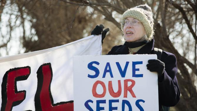 An activist protests against the production of herbicides and GMO food products outside Monsanto headquarters in Creve Coeur