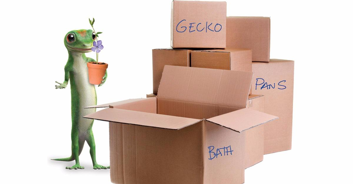 Recent Move? Get a Quote with GEICO Today!