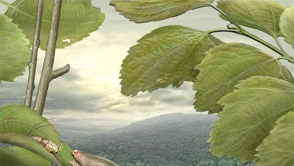 Vote: What Would You Name Squirrelly Mammal Ancestor?