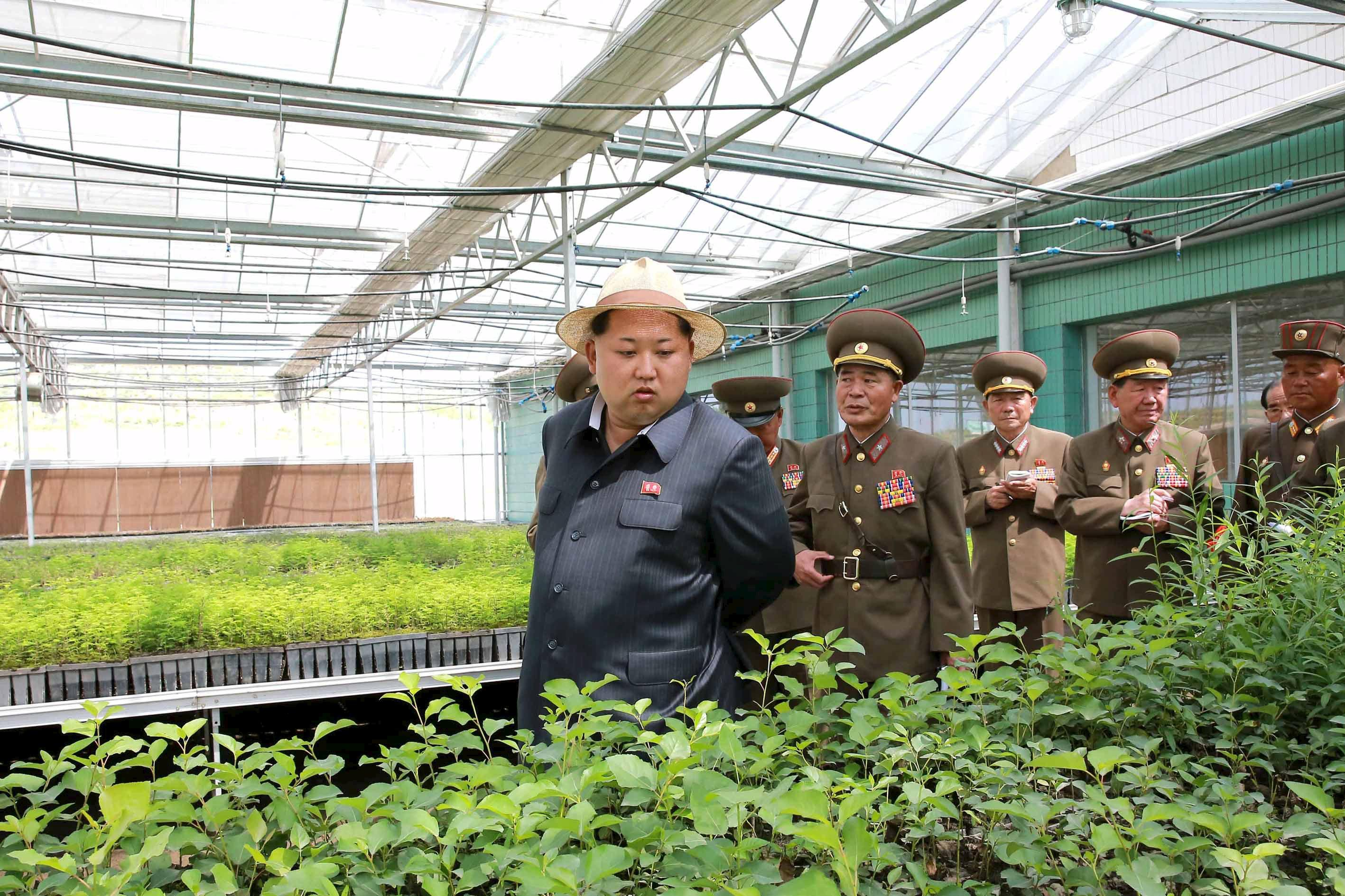 U.N. warns of coming hunger in North Korea