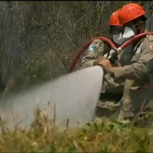 Firefighters Combat Flames in Brazil