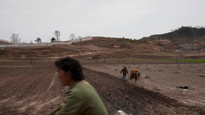 In this April 17, 2011 photo, a person on a cycle rides by as a man plows a field outside of Kaesong, North Korea. North Korea's perennial food shortage has reached a crisis point in 2011, aid workers say, because of torrential rains, the coldest winter in 60 years and rising food prices. (AP Photo/David Guttenfelder)