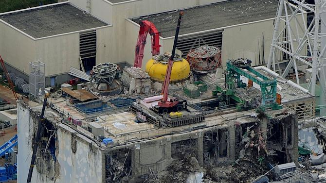 Japan utility takes out 2 Fukushima nuke fuel rods