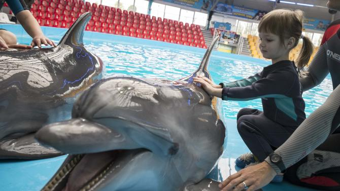 A girl touches a dolphin during a dolphin therapy session at the Nemo Dolphinarium in Kiev