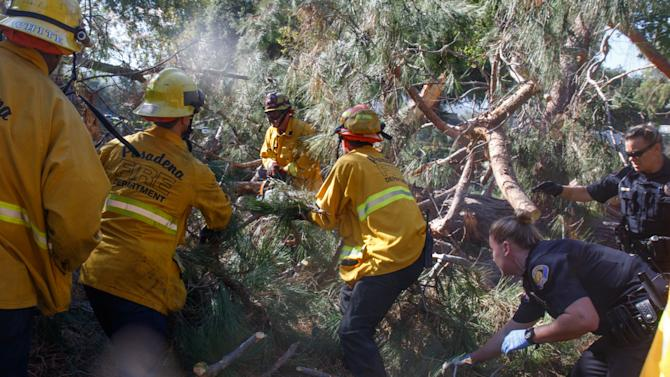 In this image released by Pasadena Fire, Pasadena firefighters and police work to remove a tree that fell near Kidspace Children's Museum in Pasadena, Calif., Tuesday, July 28, 2015. Witnesses say the tree made a cracking sound and came down on children just as a summer day camp at the museum was letting out for the day. (Jamie Nicholson/Pasadena Fire via AP)