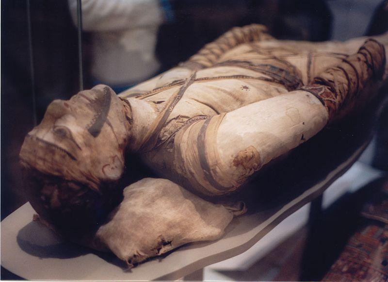 Woman's donated leg mummified using ancient Egyptian practice