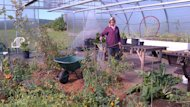 Maggie English works at the greenhouse in Sydney River.