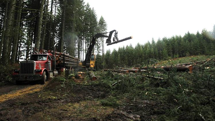 Logs are loaded on a truck in the forest near Banks, Ore., Friday, Nov. 30, 2012.  The U.S. Supreme Court will hear a case Monday, Dec. 3, regarding regulation of water runoff from logging roads.(AP Photo/Don Ryan)