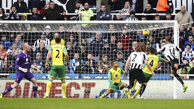 Loic Remy scores for Newcastle against Norwich (Reuters)