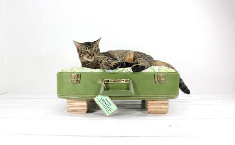 Upcycled Vintage Suitcase Pet Bed