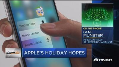 30% Apple revenue comes from holiday quarter: Pro
