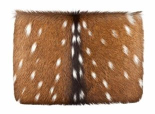 A matching deerskin clutch from Proenza Schouler