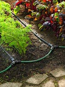 New Watering Gear Means Less Worry & Happier Plants