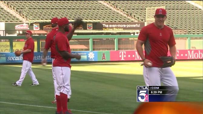 Angels Fans Are Suffering From a Bad Case of Playoff Fever