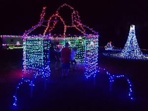 Family's Lavish Christmas Lights Brighten an Appreciative Florida Town