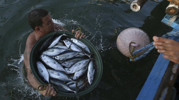 Fishermen pay price in Asia's volatile sea rifts