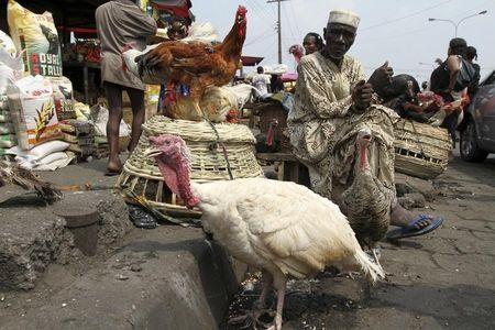 A man selling live chickens waits for customers in a local food market in Nigeria's commercial capital Lagos