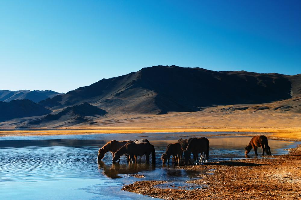 Mongolia promoted as international travel destination for 2015