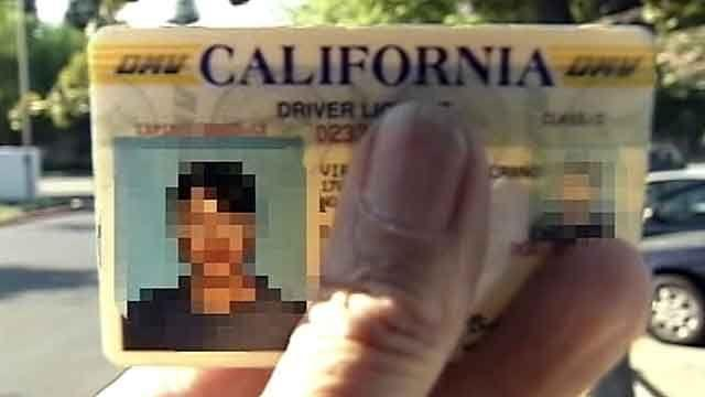 Driver licenses for illegal immigrants