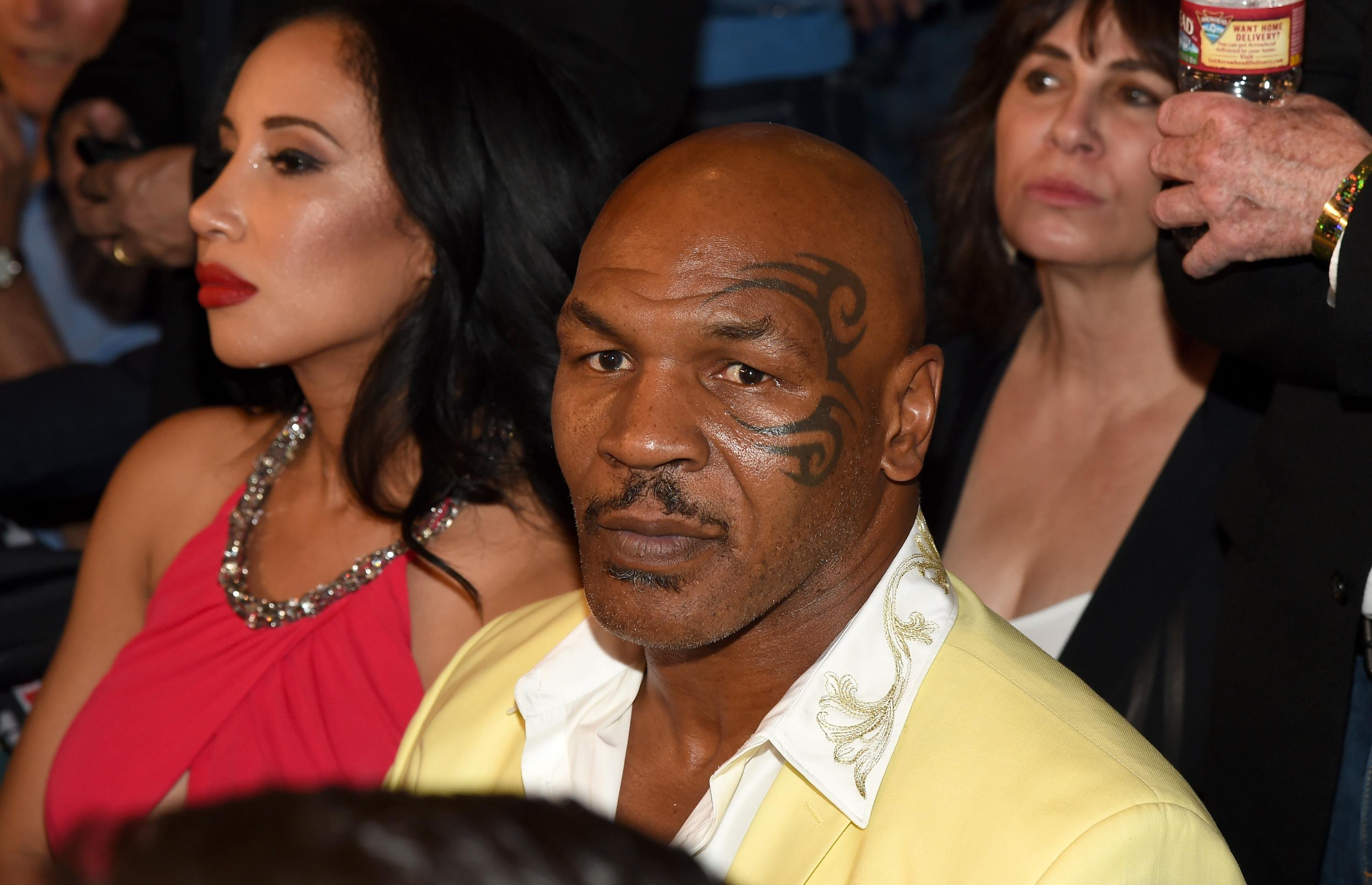 Mike Tyson shoves fan for getting a little too handsy with him