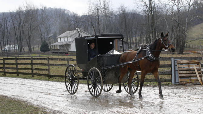 In this photo made on Tuesday, Jan. 29, 2013, an Amish buggy is driven down the road between the farms in Bergholz, Ohio that are worked by the families of sixteen men and women facing sentencing Friday, Feb. 8, 2013 in beard-cutting attacks on fellow Amish in Ohio. The defendants want leniency so they can return to their homes and farms, to teach their sons a trade and their daughters how to sew, cook and keep house. (AP Photo/Keith Srakocic)