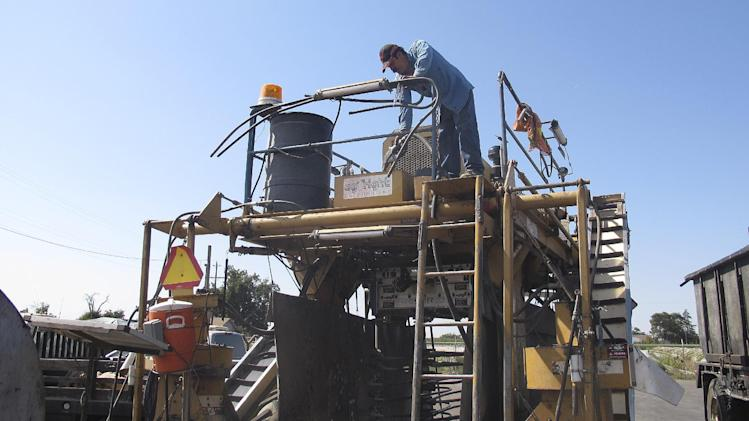 Farm worker Juan Diaz refuels a mechanical grape harvester with diesel at Nilmeier Farms in Fresno, Calif., on Tuesday, October 9, 2012. Farmers in California's agricultural heartland say record-high gas and diesel prices are putting pressure on their bottom lines. (AP Photo/Gosia Wozniacka)