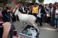 Syrian anti-regime protesters watch as a donkey walks on a portrait of President Bashar al-Assad during an anti-election demonstration in the city Qusayr, near Homs in Syria, on May 7, 2012. International powers are &quot;in a race against time&quot; to prevent all-out civil war in Syria, UN leader Ban Ki-moon has warned