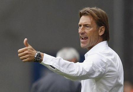 FC Sochaux's coach Herve Renard reacts during their French Ligue 1 soccer match against AS Monaco at the Auguste Bonal stadium in Sochaux