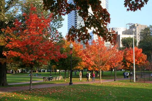 Autumn in Greater Boston: 11 Images to Prove Its Glory