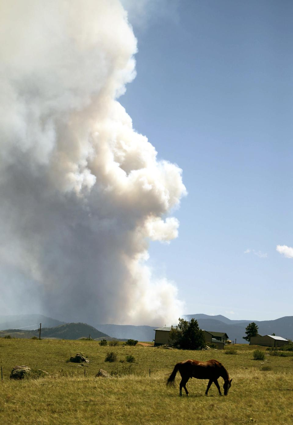 A horse grazes in a pasture along Colorado County Road 80C in Larimer County, Colo., as smoke billows from a wildfire Saturdaym June 9, 2012, northwest of Fort Collins, Colo. The cause of the fire is not yet known. (AP Photo/Laramie Daily Boomerang, Andy Carpenean)