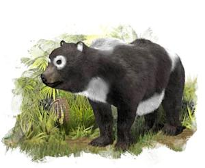 Oldest Panda Fossils Found in Surprising Place