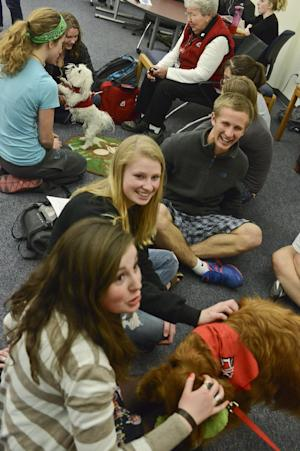 Montana State University students gather around Intermountain Therapy Animals volunteer Sandy Watson and her 4-year-old Maltese named Sophie during the Paws to de-Stress program at the Renne Library on campus of Montana State University on Thursday, April 25, 2013, in Bozeman, Mont. Intermountain Therapy Animals is bringing dogs to campus this week and next to help students take a break from the stress of studying for and taking semester exams. (AP Photo/Bozeman Daily Chronicle, Mike Greener)