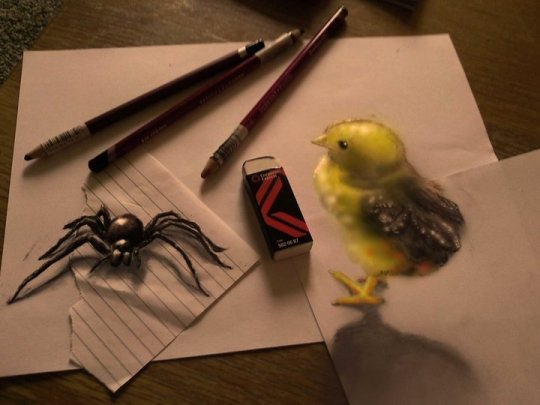 Creepy: A large spider and a chick leap off the page in this animal-themed effort (Ramon Bruin)